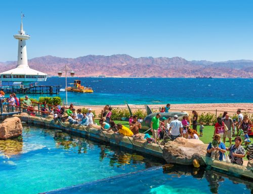 Eilat for families: 24 hours of fun