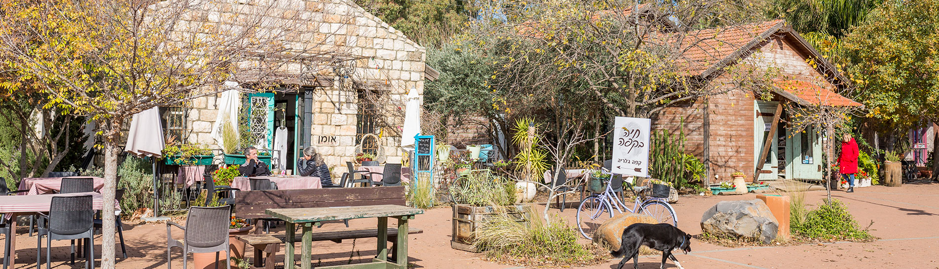 Inspiration tour: Artist Villages in Israel